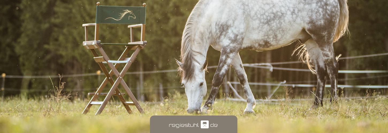 Regiestuhl, Stuhl fuer Pferdesport, Sydney, noce, gruen, mit Aufdruck